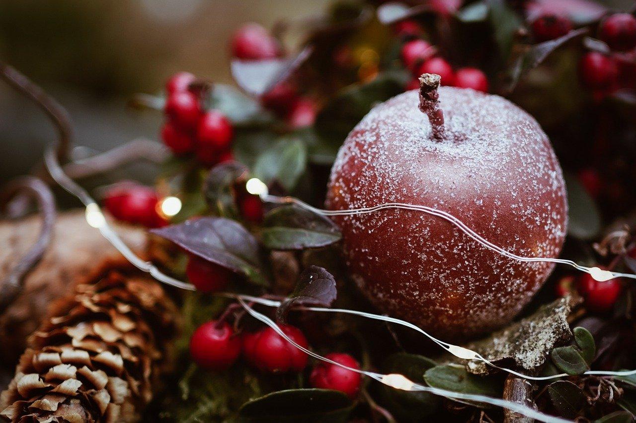 3 raisons pour lesquelles vous devriez faire prendre des photos par des professionnels pour votre carte de Noël